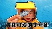 不是玩具是超级神奇的新生命一起动手来制作饲养丰年虾卤虫的实验开始喽佳佳实验室佳佳分享记