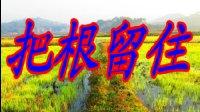 流行歌曲《把根留住》(  童安格)人生风景8号翻唱歌曲