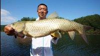 《游钓中国》第二季第44集 岸钓再战棉花滩  巧避杂鱼直击底物