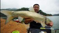 《游钓中国》第二季第45集 梅花湖杂鱼纷飞惹人厌 巧用一物频开鱼口显奇效