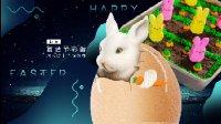 【日日煮】烹饪短片-兔子胡萝卜蛋糕