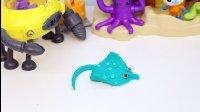 海底小纵队 彩泥制作魔鬼鱼 海底世界 玩具 动画