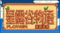 【花花玩游戏】星露谷物语05(直播录像)