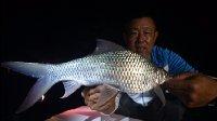 《游钓中国》第二季第47集 回归淡水抽鲮鱼 五点梅挑灯夜战