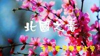 于辰电子琴电吹管 吹出来的弦乐 北国之春(17050601)