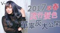 【染发教学】2017早春流行发色单宁灰大公开(蓝紫色)