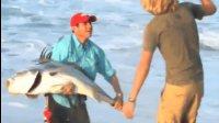 老外海滩钓上来的大丑鱼, 个头比小孩子还大。