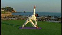 跟我学全程伴随式瑜伽03