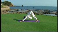 跟我学全程伴随式瑜伽04