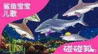 鲨鱼一家 鲨鱼实象图版  | 碰碰狐!鲨鱼宝宝儿歌 第 5集