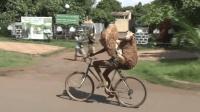 《美骑快讯》第160期 刷三观! 民间高手背两只绵羊骑自行车