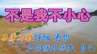 伤感情歌《不是我不小心》流行歌曲网络MV歌曲