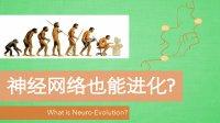 什么是神经网络进化? What is Neuro-Evolution?