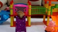 小猪佩奇粉红猪的玩具游乐场 仓鼠在游乐场玩玩具