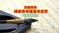 融通四海--杨宗霖书法艺术鉴赏【华夏国际视窗】原创