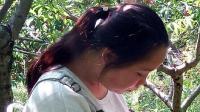 TSH视频_贵州云南山歌-情哥情妹早结婚