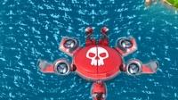 海岛奇兵-超级海龟-33(物种起源阿姆分享)-hgl磊磊