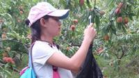 TSH视频-贵州山歌-唱首山歌做人情