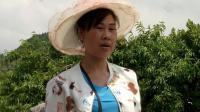 TSH视频-贵州山歌-唱首山歌把妹跟