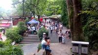 TSH视频-贵州山歌-来在花园不见郎