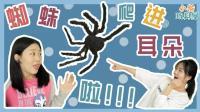 蜘蛛爬进耳朵怎么办? 小蜗大显身手解救落难的琪琪!