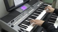 《说再见不应该在秋天》电子琴演奏短视频 萨克斯旋律好好听