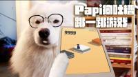 按这狗狗的方法玩微信跳一跳, 绝对能通关! 反正我信了!