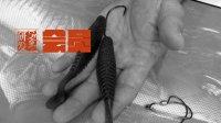 非公共视频: 八达鱼人研发会员专刊系列: BA T7延伸应用(一)