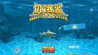 周姐解说饥饿鲨进化01期礁鲨来了