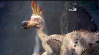 木目《怪物猎人:世界》第四期 狩猎搔鸟