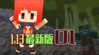 《直播回顾》【甜萝酱我的世界MC实况】Minecraft 1.13原版服务器生存#1 水怪来袭