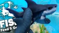 木子秋《模拟食人鱼》鲨鱼: 你敢动吗? 鲤鱼: 不敢动不敢动