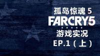 【神探莫扎特】我不管!我就是要一上来就打BOSS!-孤岛惊魂5(FarCry5)丨游戏实况EP.1(上)