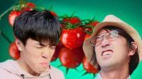 与网红老番茄进行吃番茄大对决!