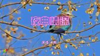 七郎 - 夜曲情深  闽南语