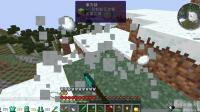 我的世界怪物大乱斗4天打末影龙03: 杀蜜蜂挖雪球找到地牢位置