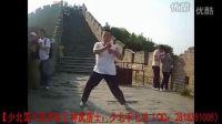 【少北国大武术队】神武居士:少北手七功