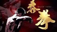 泰拳中文教程
