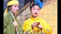 湖南地方戏曲湖南花鼓戏《费姐》(小姑不贤)第二集