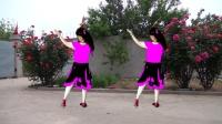 吕芳广场舞 原创 好看好学32步《一朵回忆心上开》特效换衣正背面及分解动作
