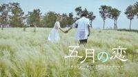 【五月の恋】小清新日语版|佳映出品