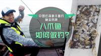 中国近海最丰富的鱼类资源——八爪鱼如何做钓?