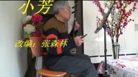 小芳——二胡独奏