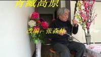 青藏高原——二胡独奏
