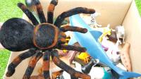 儿童动物园动物玩具和真实动物 萌娃认识动物学习视频