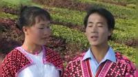 潘树明经典MV 苗族歌曲阿卯歌曲《不想放弃》