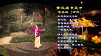 简单易学的经典诗词大众舞: 青玉案·元夕 紫色风信子编跳