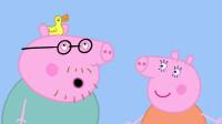 小猪佩奇第5季精华版_04  猪爸爸头上的鸭子
