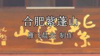合肥紫蓬山_雁飞晨光