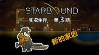 【丁菊长】翼族与叶族村庄~【星界边境 starbound】实况生存第3期